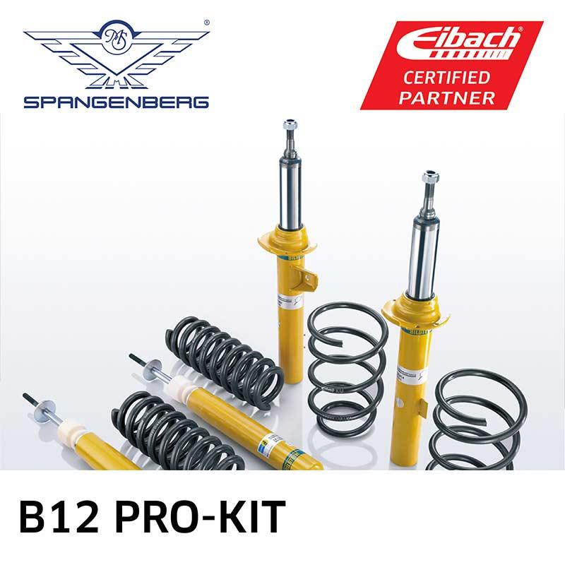 b12-pro-kit-eibach